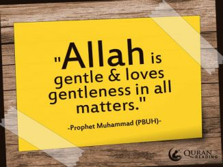 Islam loves gentleness and hates harshness and extremism